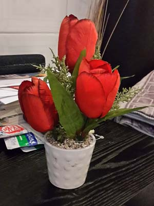 3 Roses from Chai