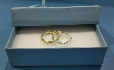 My Cute Dolphin Rings