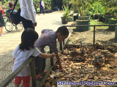 Feeding ducks.. kwek.. kwek..