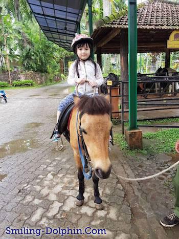 CG riding a horse