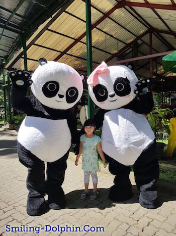 Met Safari Panda