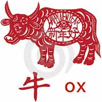 2009 - Ox Year